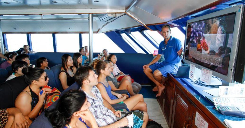 scuba diving day tours