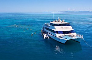 Reef Experience - reeftrip