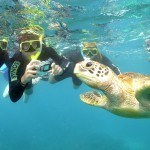 Reef, Bungy and ATV Adventure Package