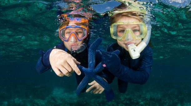 Reef Experience Snorkelling Children
