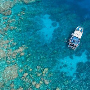 Cairns Reef and Tropical Delights