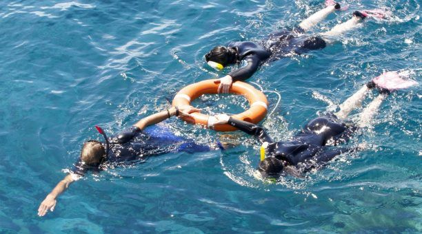 Guided snorkel tour
