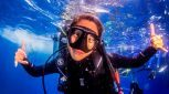 Great Barrier Reef and Cape Tribulation Tour